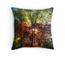 """FALL"" in ""LOVE"" Throw Pillow"