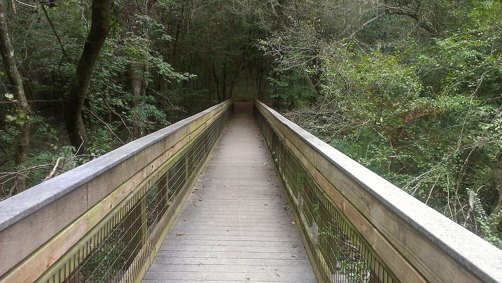 Bridge To ? by Derek Little