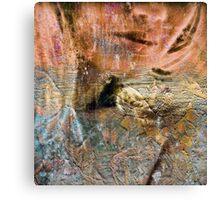 Belle noise 2 Canvas Print