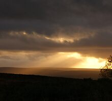 Shafts Across The Moors by TREVOR34