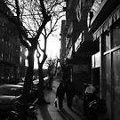 Fading Street by Avner