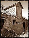 Rustic Memories by Greg Belfrage