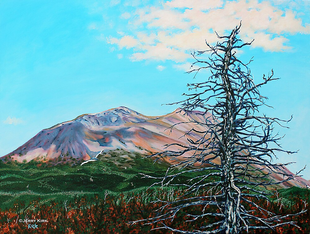 'Ghost Tree' (Alaskan Nature Conservatory) by Jerry Kirk
