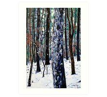 'Woods in Snow' Art Print