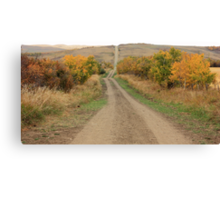 Country Road to Nowhere Canvas Print