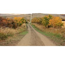 Country Road to Nowhere Photographic Print