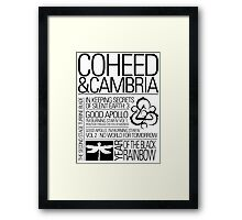 Typographic Fence Framed Print