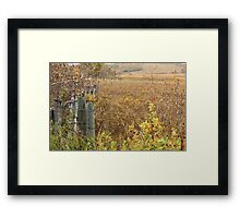 Gate to the Pasture Framed Print