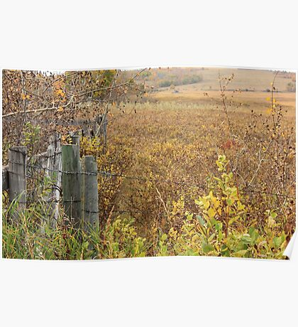 Gate to the Pasture Poster