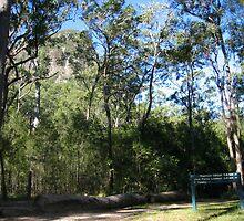 Tibragargan, GlasHouse Mts s e QLD Aust. by MardiGCalero