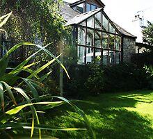 September Sun: Morning Garden by Áine Warren