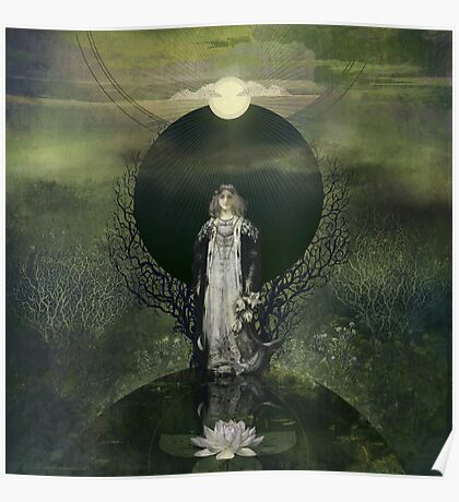 Moonlight Lotus Poster