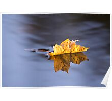 Autumn Leaf Floating On Silky Water Poster