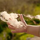 A Child Holding A Piece Of Wool  by Kuzeytac