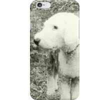 Sheepdog: Alert iPhone Case/Skin