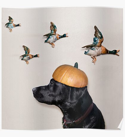 Halloween Dog with Flying Ducks Poster