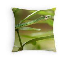 Natal Green Tree Snake Throw Pillow