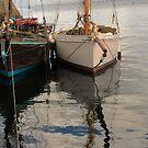 Cornish Oyster Catchers by bertie01