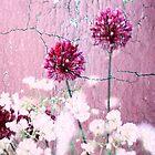 Purple on Purple by Paula Belle Flores