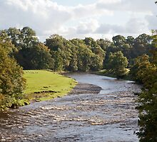 River Ribble by Imager