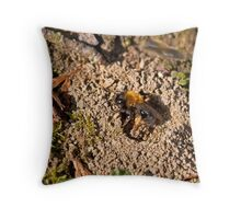 Mining Bee at nest hole Throw Pillow