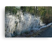 Icicles in Winter Canvas Print