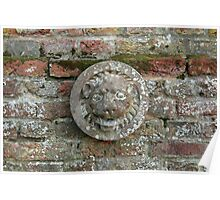 Lion Plaque on Wall Poster