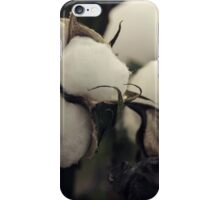 Cotton Field 7 iPhone Case/Skin