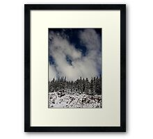 Trees of the Sky Framed Print