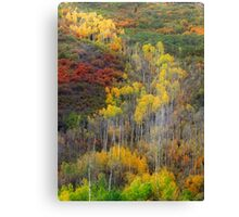 Avalanche of Color Canvas Print