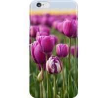An iPhone - Outstanding in It's Field! iPhone Case/Skin