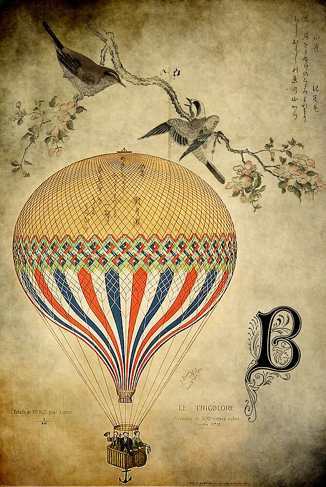 Vintage Balloon by garts