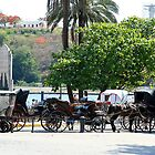 Cuban carriages by Maggie Hegarty