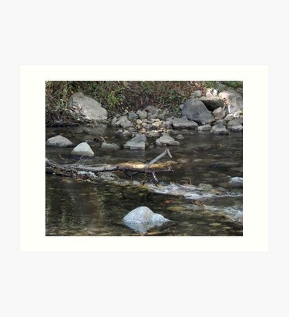 Big Sur River Pool  Art Print
