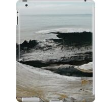 Tree Sculptured Boat iPad Case/Skin