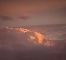 Pink Cloud in setting sun by Sue Robinson