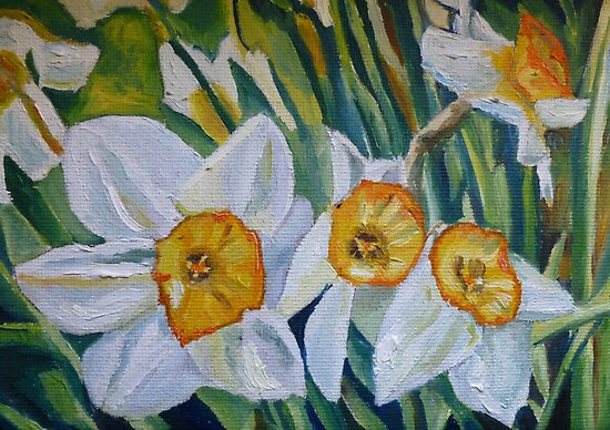 Daffodils by Emma Cownie
