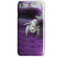 itsy bitsy iPhone Case/Skin