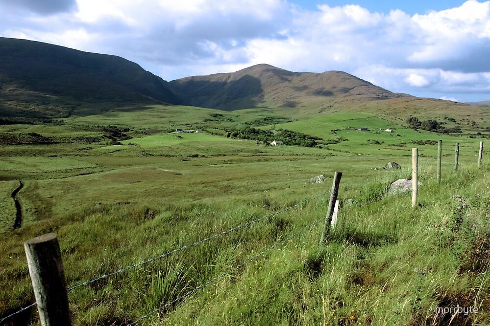 green fields of ireland by morrbyte