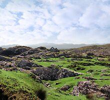 ruin in irish rocky landscape by morrbyte
