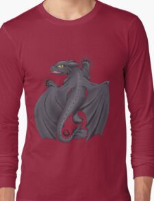 Train your Dragon! Long Sleeve T-Shirt