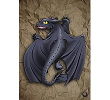 Train your Dragon! Photographic Print