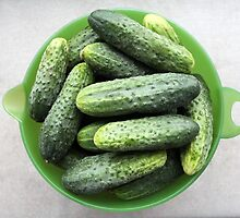 bowl of cucumbers by mrivserg