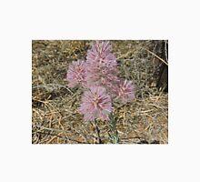 Mulla Mulla flowers, Ptilotus Atripicifolius Unisex T-Shirt
