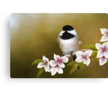 Apple Blossom Chickadee Canvas Print
