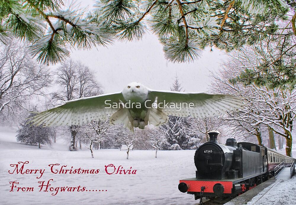 Merry Christmas Olivia by Sandra Cockayne