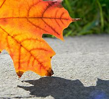 Leaf 2 by K. Abraham