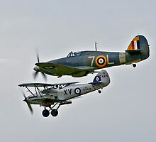 Sea Hurricane and Hawker Hind by DonMc