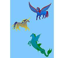 Mythical Horses Photographic Print