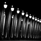 Paris - Bir Hakeim Bridge. by Jean-Luc Rollier